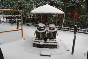 雪と夫婦狛犬